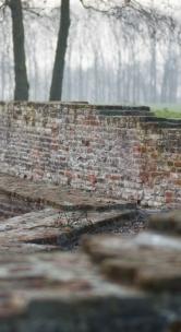 seksueel-misbruik muur